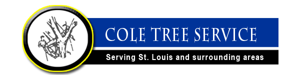Cole Tree Service - Serving St. Louis and Surrounding Counties